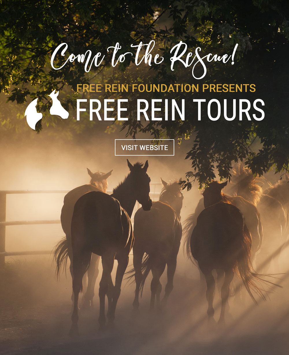 Free Rein Tours Website